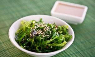 alge u ishrani