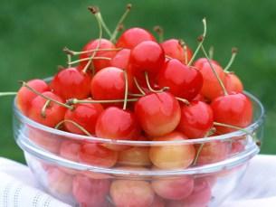 tresnje kalorije vitamini