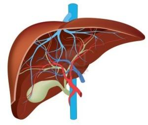 Detoksikacija i čišćenje jetre
