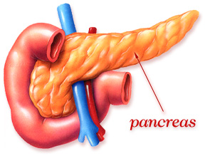 Rak gušterače-pankreasa simptomi