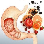gorusica ishrana