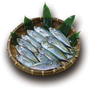 ribe kalorije