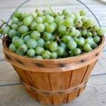Slatko od groždja recept