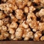 Čičoka lekoviti divlji krompir – recepti