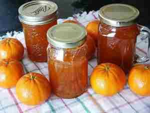 kompot od mandarina