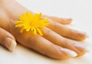 lekovito bilje za nokte