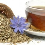 Čaj od vodopije ( cikorije )