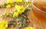Divizma čaj – lekovitost – kako ga napraviti