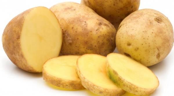 jela od krompira