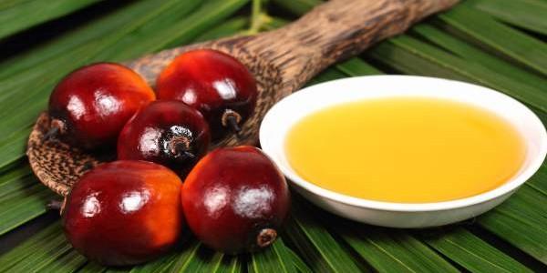 Palmino ulje upotreba za prženje, kosu, kožu…