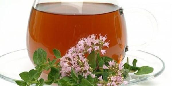 Čaj od divljeg origana upotreba i priprema