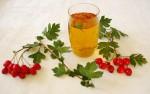 Čaj od gloga kao lek za srce i pritisak, priprema i upotreba