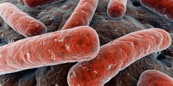 Tuberkoloza pluća simptomi, dijagnoza, terapija
