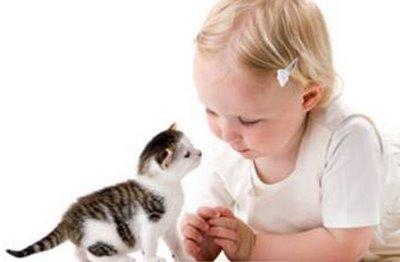 Bartoneloza bolesti mačjeg ogreba simptomi i lečenje