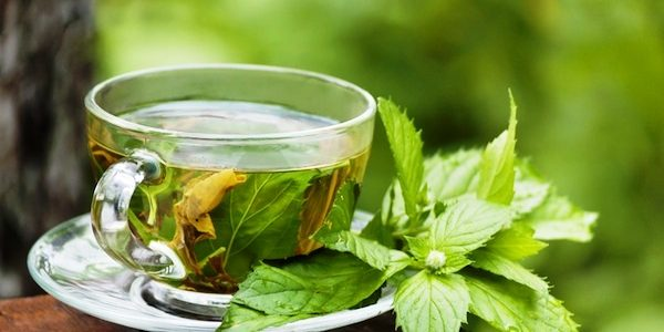 Najbolji čajevi za jačanje imuniteta, moždanih funkcija, borbu protiv umora i još puno toga