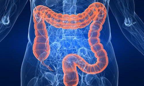 Lokalizovani bol u debelom crevu (kolonu) sa leve ili desne strane – simptomi i uzroci