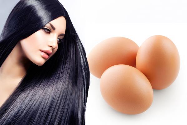 jaja za kosu