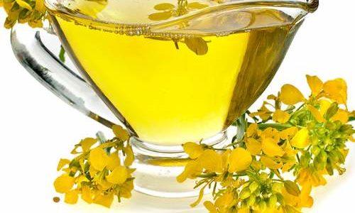 Kanola – ulje od uljane repice za i protiv