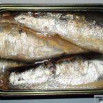 sardine iz konzerve i zdravlje