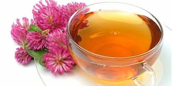 Crvena detelina kao lek – čaj – sirup