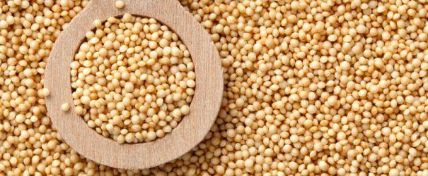 Amarant, žitarica s vitaminom C