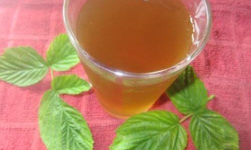 Čaj od lista maline za lakši porođaj i plodnost – priprema i upotreba