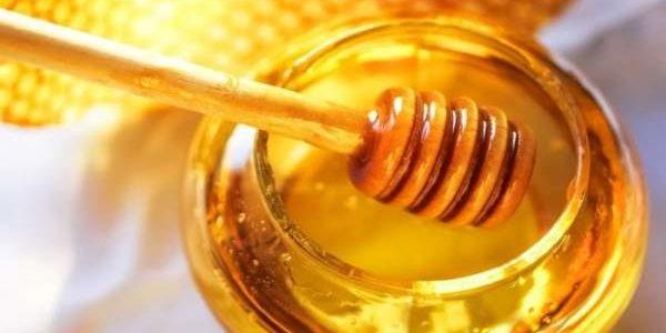 Med u trudnoći – da ili ne ?