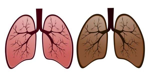 Čiscenje pluća i krvnih sudova od nikotina