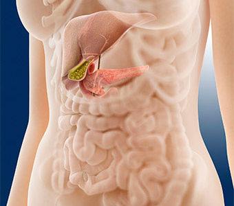 Pankreas dijeta – šta je dobro jesti kod bolesti pankreasa ?