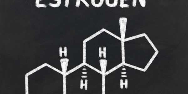 Prirodni estrogen u hrani – najbolje namirnice za povećanje važnog hormona
